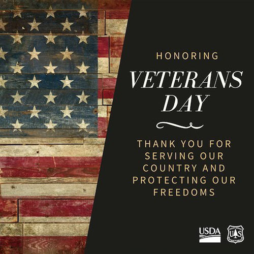 Veterans Day Thank You Forest Service