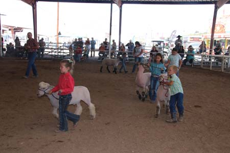 Grant County Fair 2021