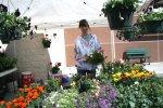 Home & Garden Expo 2014