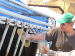 Ranch Days 2014
