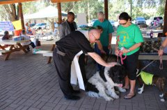 Blessing of the Animals 100717
