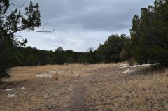 One Million Bones go up to permanent meadow 120617