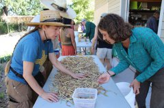 The Commons holds Harvest Festival 101417