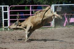 Rodeo at Baird Arena 092318