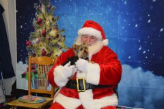 Santa at Our Paws Cause
