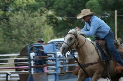 Frank Kenney team roping 081519