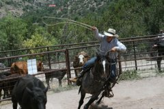 Frisco Cowbelles Rodeo 070619