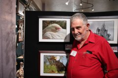 Grant County Art Guild hosts annual Southwest Birds Show 083019