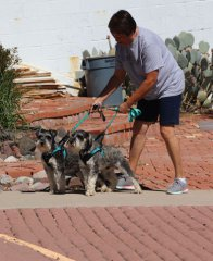 Blessing of Animals at St. Francis Newman Center 100519