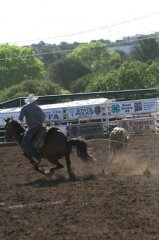Wild, Wild West Pro Rodeo slack roping 061219