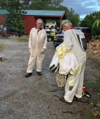 Beekeepers re-home beehive